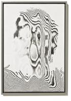 Interferenz, 2011, 29 x 42 x 2 cm, Laserdrucke, Leim, Rahmen